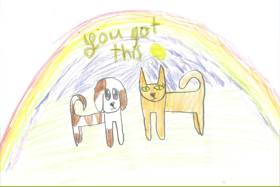 Drawn by one of our RSPCA Junior Rescue Officers